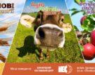 Розпочніть  сезон 2018 з  виставкової події в сферах зерновиробництва, тваринництва та плодоовочевої галузі!
