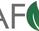 GB Minerals и Itafos объявили о завершении слияния