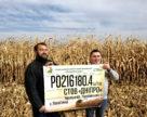 В Украине урожай кукурузы может достигать 18 тонн с гектара