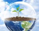 В Германии не разрешены польские средства защиты растений