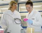 Інноваційні засоби захисту від компанії BASF