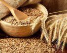 Производство зерновых в этом сезоне может увеличиться до 65,8 млн тонн