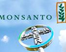 Bayer (BAYGn.DE) планирует продать свой бизнес по цифровому сельскому хозяйству BASF (BASFn.DE)до предполагаемого поглощения Monsanto