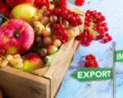 Експорт українських плодів та ягід у першому кварталі 2018-го збільшився на 68%
