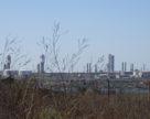 ОПЗ остановил производство карбамида
