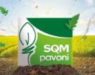 SQM купила 50% Pavoni и планирует развернуться на рынке Италии