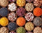 Чем сдерживается  агробум по выращиванию нишевых культур?