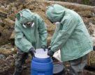 У Сумах проведуть перезатарення пестицидів у нові ємності