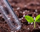 В Україну завозять пестицидів більше ніж на півмільярда доларів