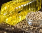 В ЕС ожидается снижение урожая масличных культур
