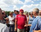 У південних областях України цього року знищать понад 1000 га винограду