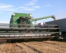 Аграрії Запоріжжя намолотили понад 2 млн тонн зерна