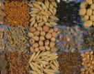 Підготовка складських приміщень до прийняття насіння нового врожаю