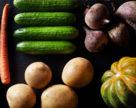 Исследователи из Канады получили финансирование на создание устойчивых к  болезням сортов овощных культур