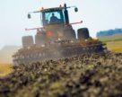 Производство сельхозпродукции в Украине снизилось на 1%