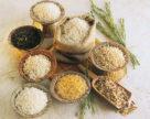 Создание новых устойчивых сортов риса