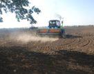 В Украине значительно подорожала осенняя посевная