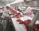 Датчане построят в Ивано-Франковской области мясокомбинат