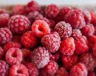 Производитель органической малины запустил холодильный цех за 100 тыс. евро