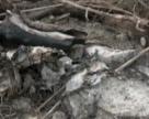 """Прострочені пестициди хочуть зберігати на території """"Сумихімпром"""""""