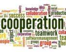 Українське законодавство щодо кооперації потребує вдосконалення