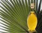 Украина в январе-ноябре 2018 года импортировала 205 тыс тонн пальмового масла