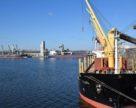 Структура украинского экспорта: 90% сырья и 10% переработки