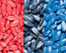 Від якості насіннєвого матеріалу та правильного протруйника залежить 50% урожаю