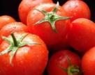 Стартует реализация овощей из пленочных теплиц на юге Украины