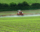 Роботи із захисту посівів сільськогосподарських культур