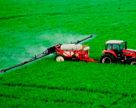 Россия может сократить выпуск удобрений