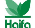 Haifa начнет выращивать в космосе