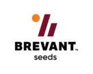 Портфель озимого ріпаку Pioneer® переходить до бренду Brevant™