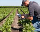 Сельскохозяйственное решение от Sony и Syngenta