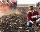 Європейські фермери в 6 раз збільшили прибуток перейшовши на органічне землеробство