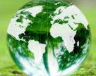 Мировой обзор отрасли пестицидов
