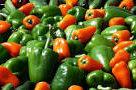 Інфографіка: ринок перцю в Україні – УКАБ