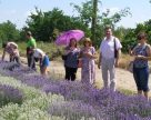 Українські фермери освоюють професію