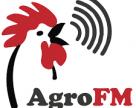 Как уменьшить финансовые риски в агробизнесе?
