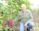 Троянди й виноград: захоплення аграрія з Київщини переросло у бізнес
