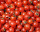 Экспорт томатов из Украины остается рекордно низким