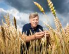 Yara и Lantmännen создают цепочку производства продовольствия без использования ископаемого сырья