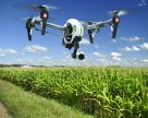 Скільки коштують іноваційні сегменти глобального ринку агротехнологій?