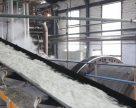 Гнідавський цукровий завод планує завершити сезон в перших числах грудня