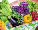 Український споживач пробачає все, або Чому експорт овочів зростає дуже повільно?