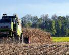 ЕБРР запускает новую программу по возобновляемой энергетике в Украине