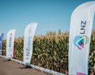 LNZ Group підбила підсумки за літній період