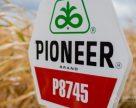 Corteva підтверджує продаж насіння Pioneer у кредит