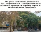 В Одесі планується масова вакцинація каштанів
