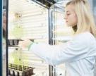 «Зимові» дослідження від «Інституту здоров'я рослин»
